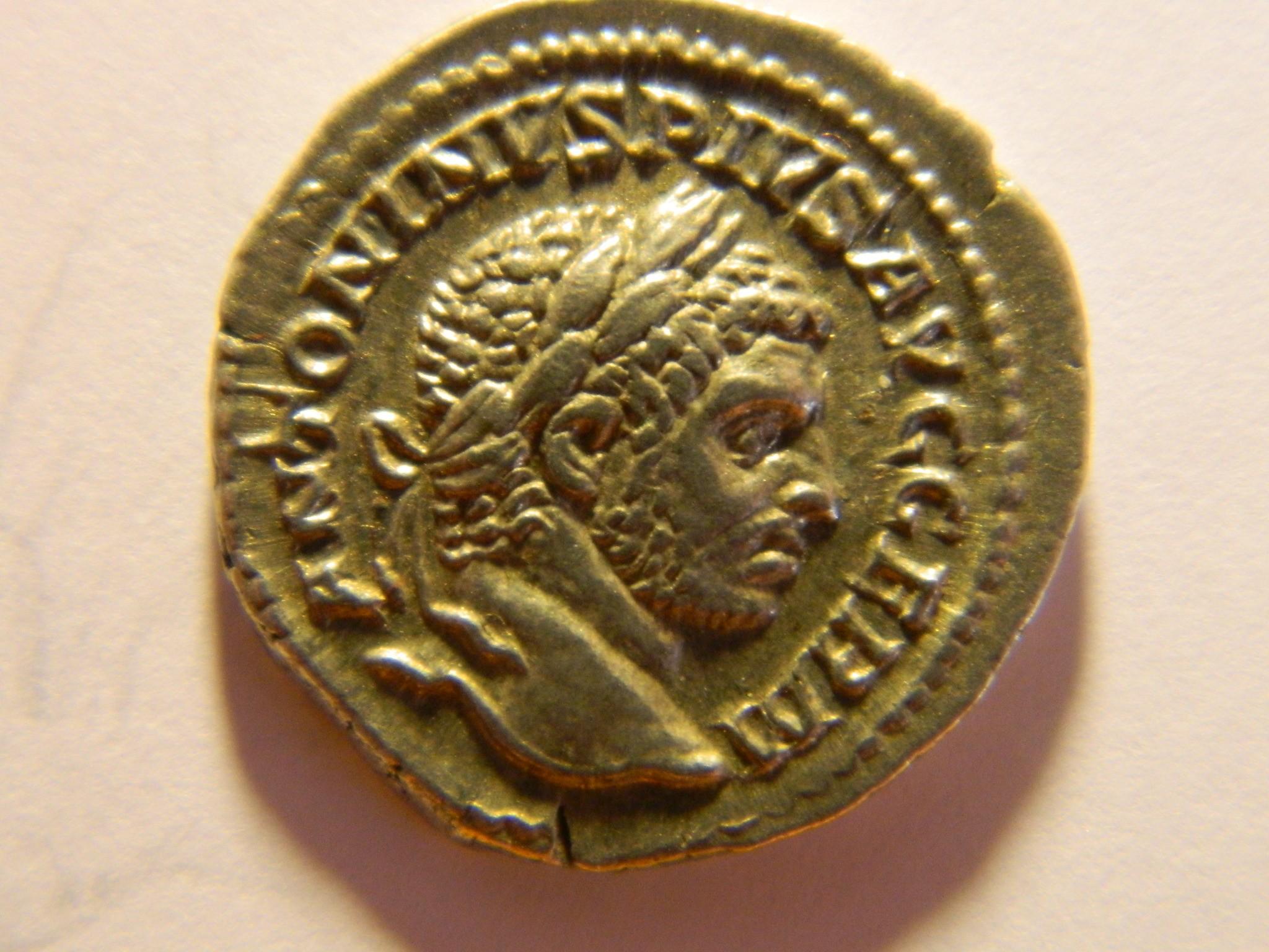 RM021 CARACALA Denier argent